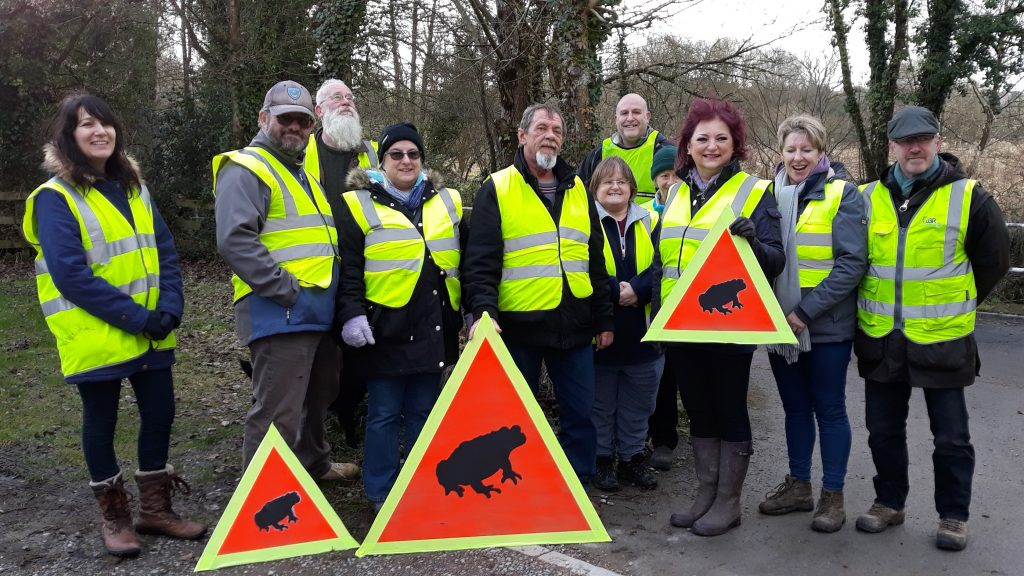 Toad Patrollers ready to go