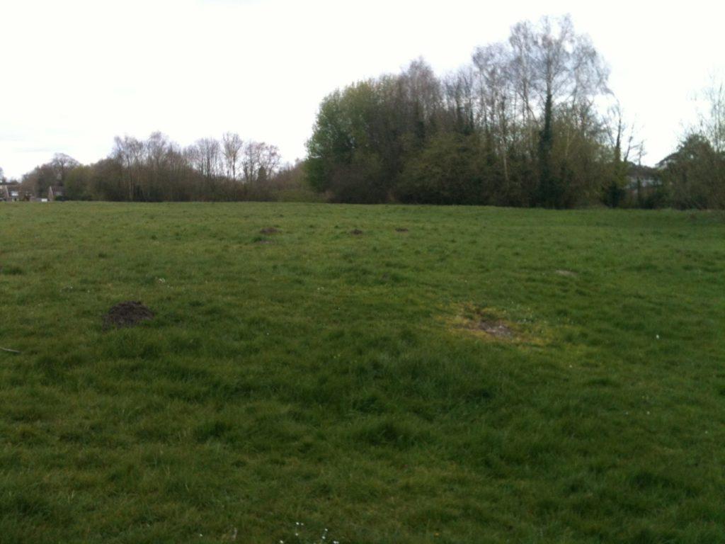 Portway Lane field